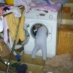 Giù le mani dal mio bucato!