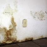 Qual è l'umidità ottimale all'interno della casa?