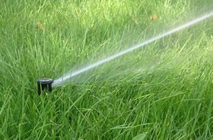 Un irrigatore da giardino