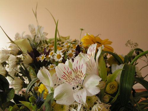 Decora la tua tavola con i fiori for Decora la tua casa